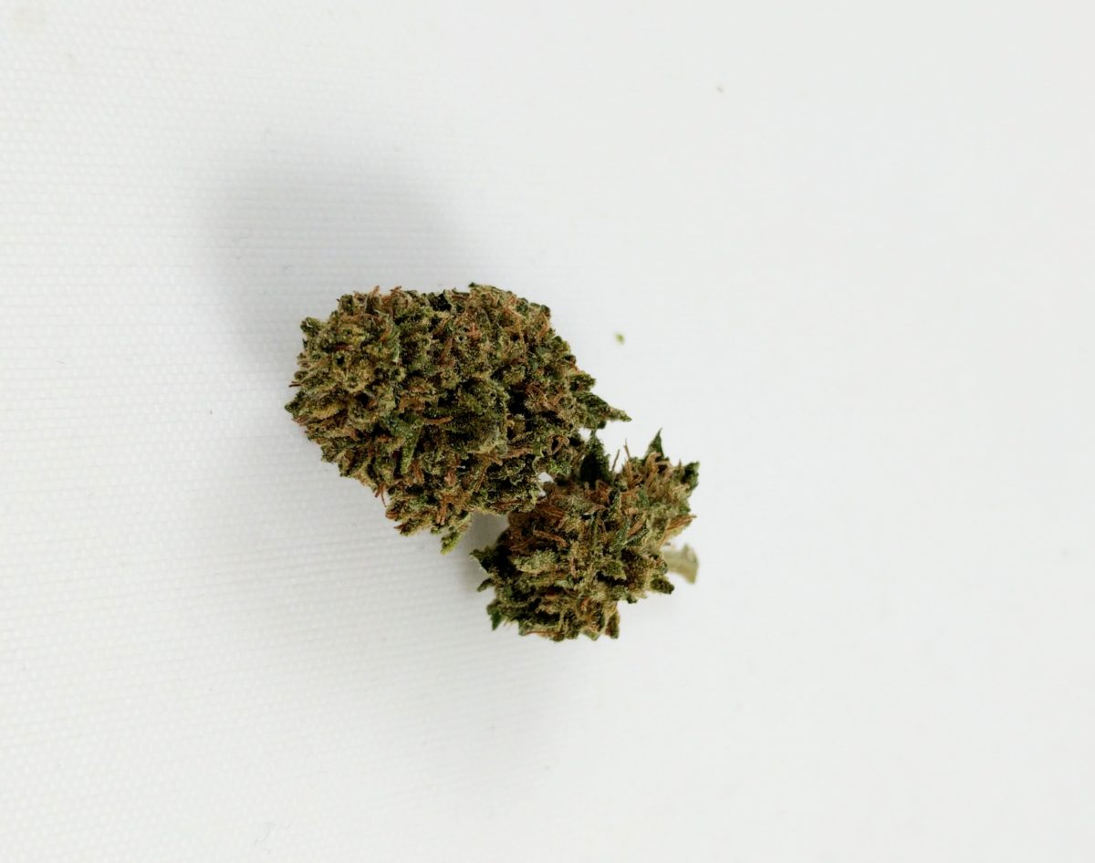 Cannatonic Strain Review – By Oregon Country Cannabis